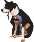superhero pet costumes