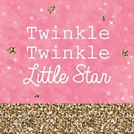 little star party theme