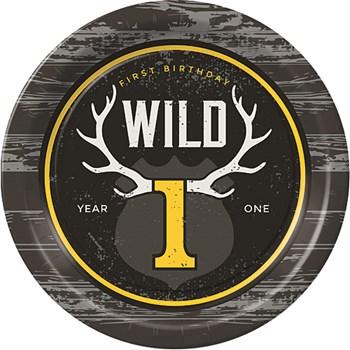 wild one party theme