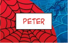 spiderman placemats