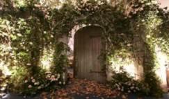 garden party ideas