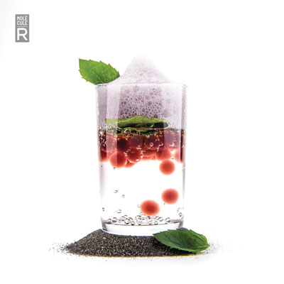 molecular gastronomy cocktail kits