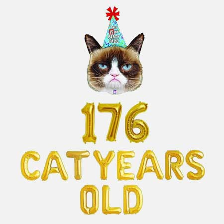 176 cat years old balloons