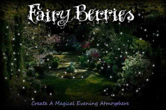 fairy berries