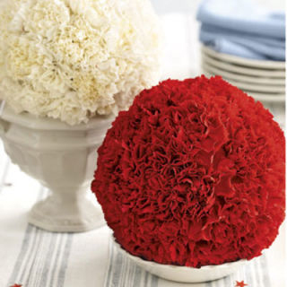 carnation balls