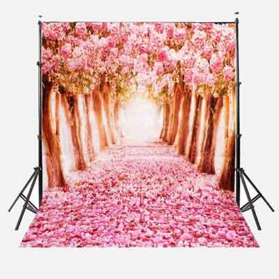 photo backdrops
