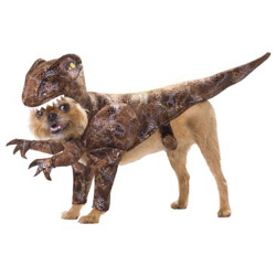 pet dinosaur costumes