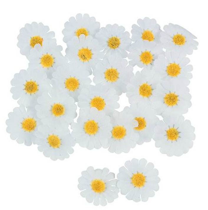 daisy decorations