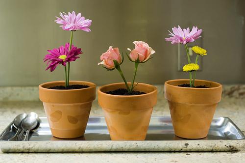 flower pot desserts