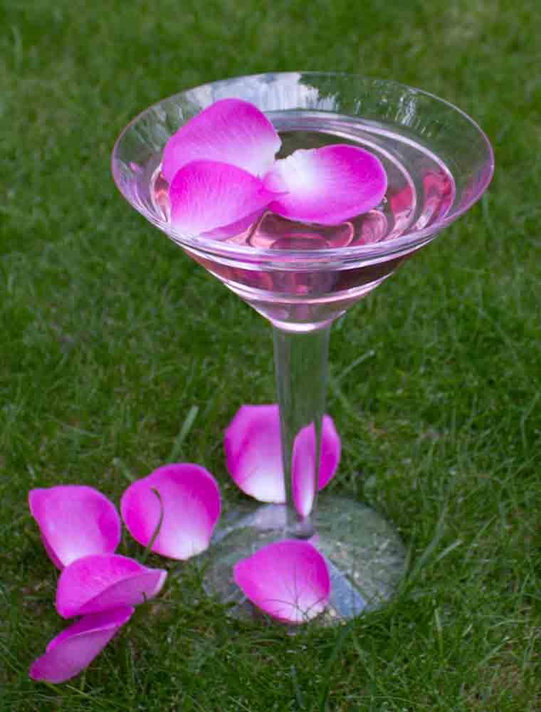 rose petal martini