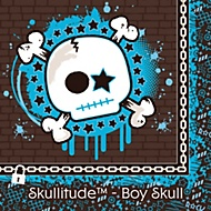 skullitude boys party theme