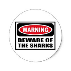 beware of shark stickers