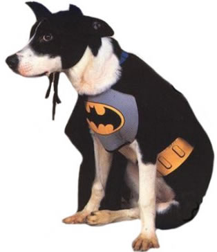 superhero pet costumes