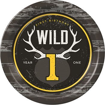 wild one party theme