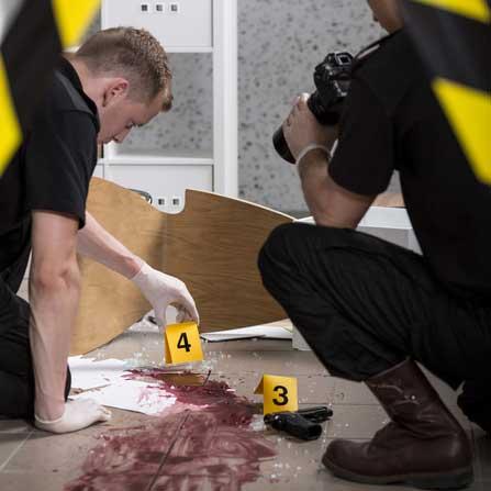 crime scene adventure