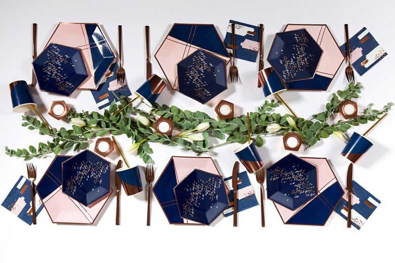 pink & navy disposable tableware