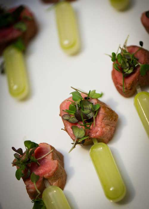 lamb with pipettes