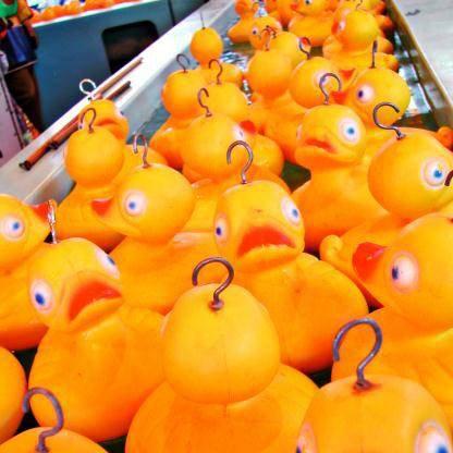 carnival hook a duck