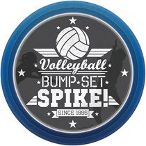 volleyball party theme