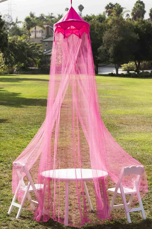 pink princess canopy